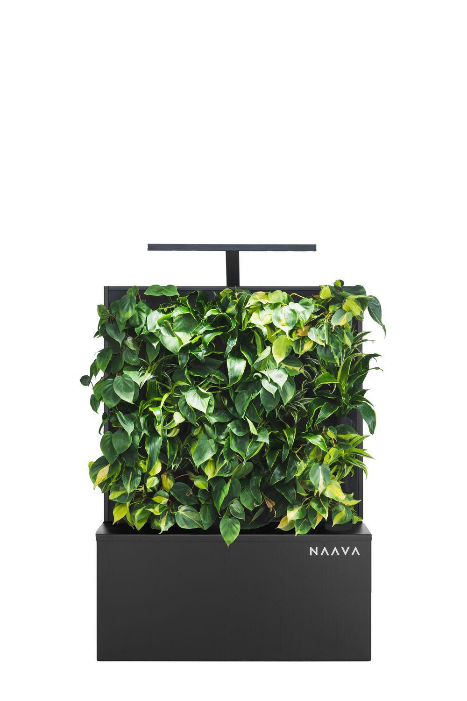 Naava Flow