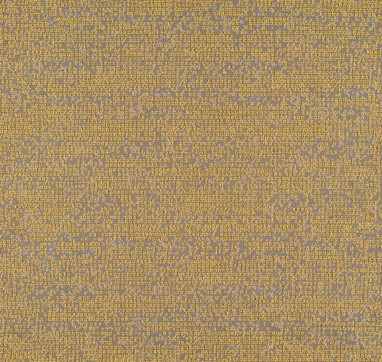 Photogram - Sunprint - 4094 - 05 Tileable Swatches