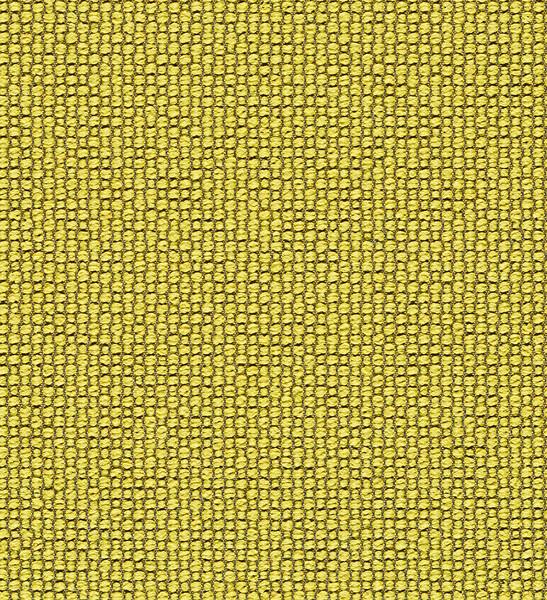 Ample - Sunburst - 4034 - 03 Tileable Swatches