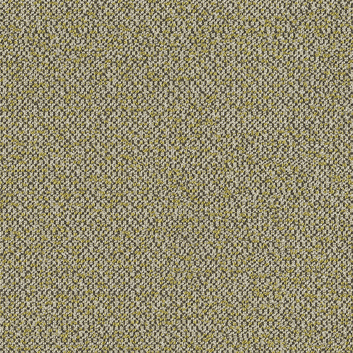 Haptic - Isthmus - 4093 - 13 Tileable Swatches