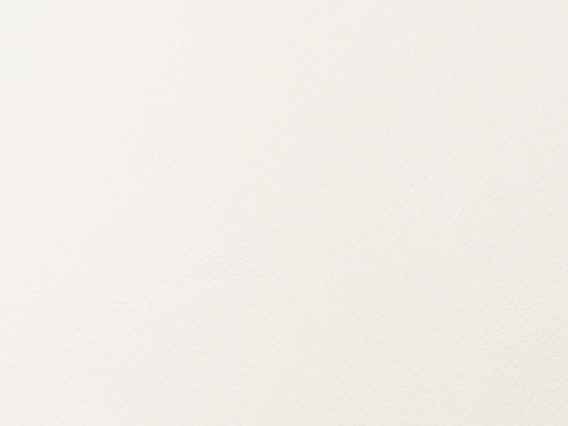 Merus - White Birch - 4023 - 02 Tileable Swatches