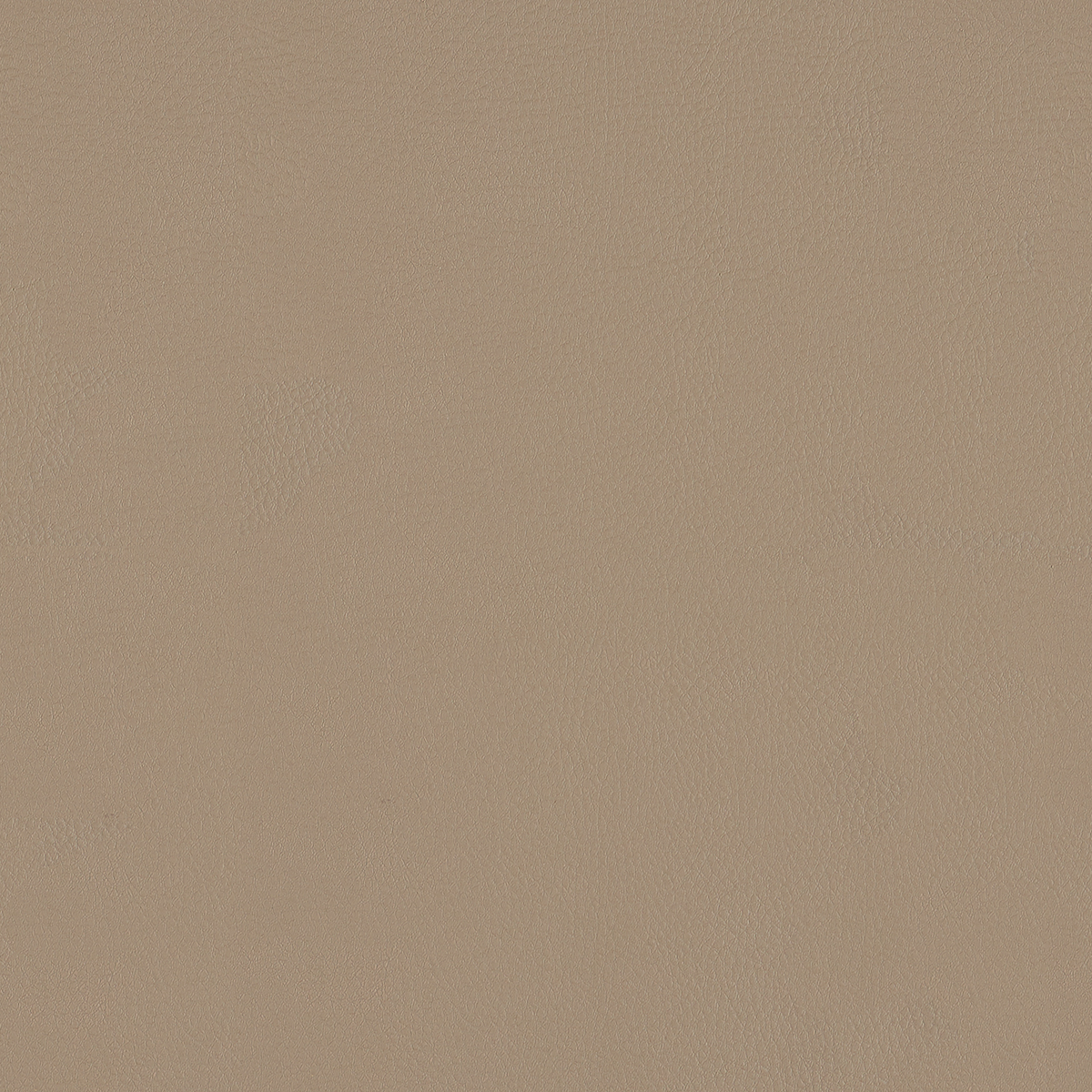 Top Coat - Stoneware - 4083 - 04 - Half Yard Tileable Swatches
