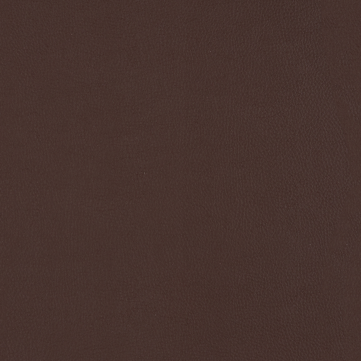 Top Coat - Aniline - 4083 - 05 Tileable Swatches
