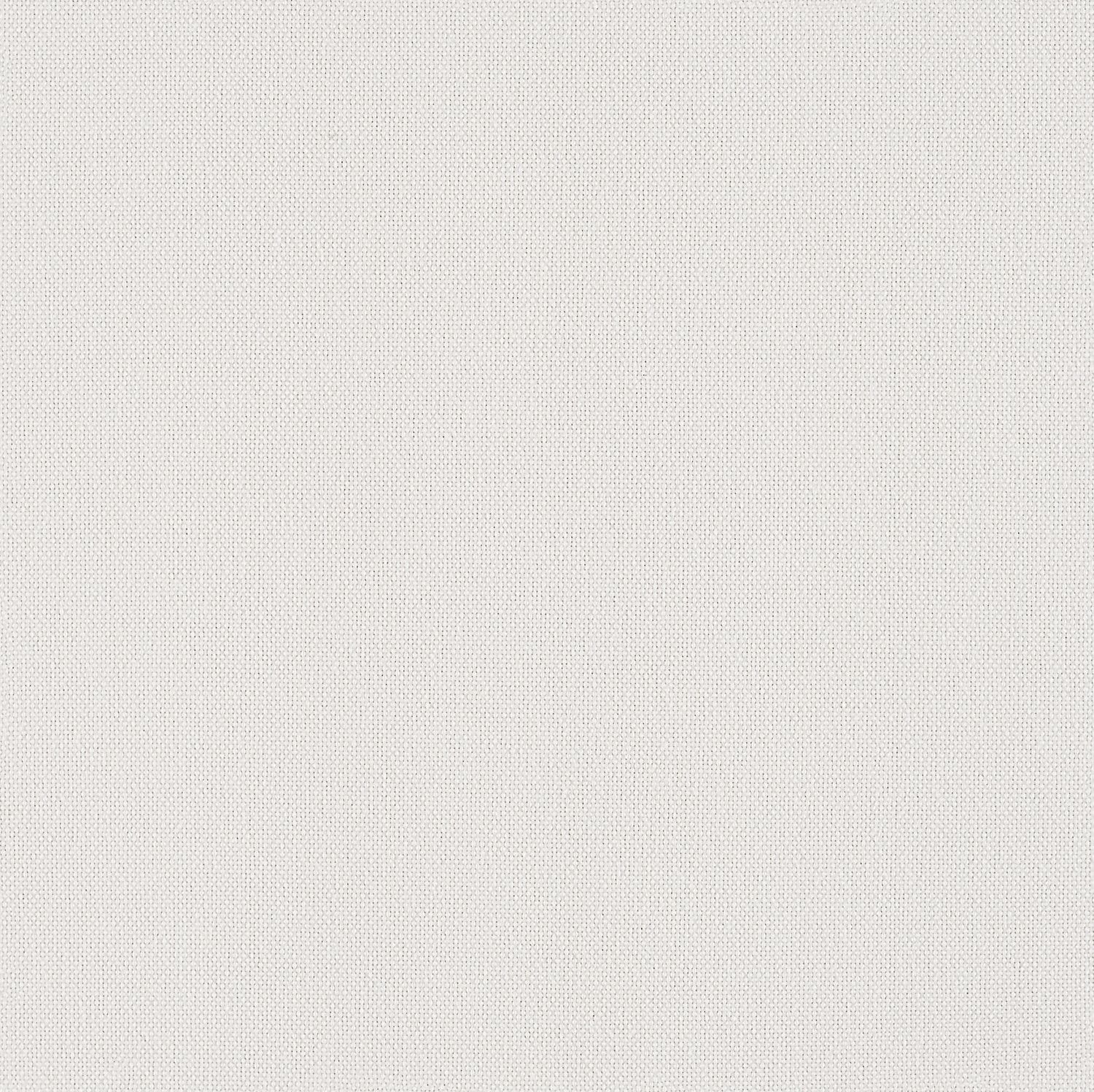 Backdrop - White Out - 1027 - 01 - Half Yard Tileable Swatches
