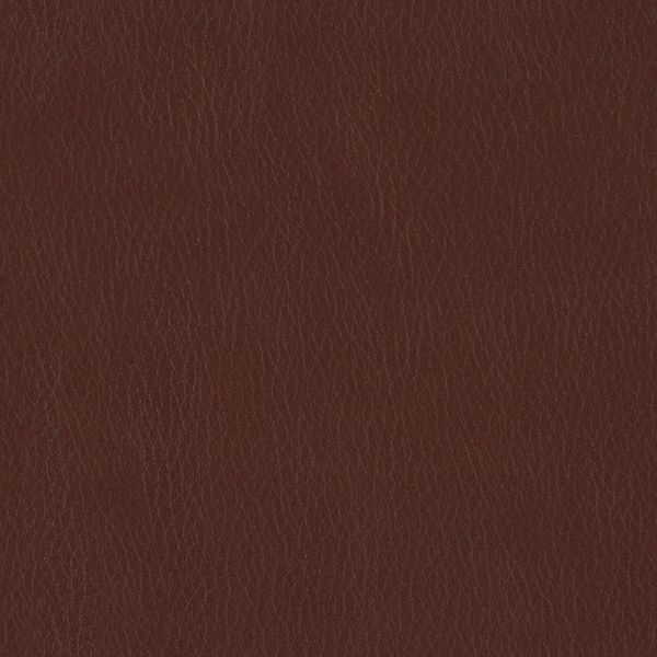 Fortis - Oxtail - 4025 - 06 - Half Yard Tileable Swatches