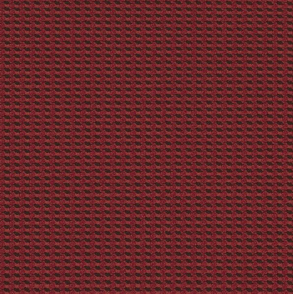 Cross Dye - Carmine - 4009 - 10 - Half Yard Tileable Swatches